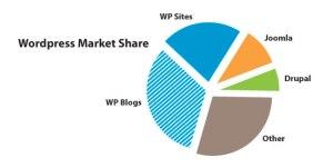 wp_marketshare
